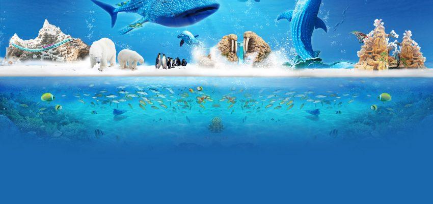 珠海的長隆海洋王國好玩嗎?